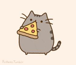 pizza_gatos_sos_solteiros