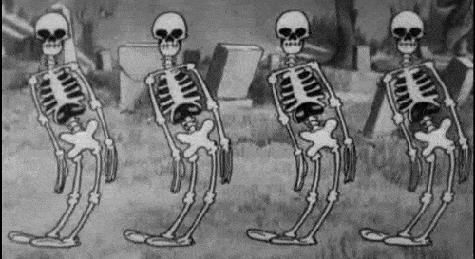 osso_gatos_sos_solteiros
